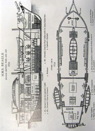 BEAGLE SHIP