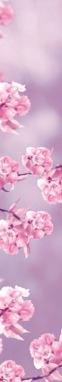 MY SCENT TRUSSARDI FLOWERS (1)