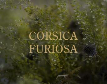 CORSICA FURIOSA PARFUM D'EMPIRE MOOD1