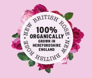 BRITISH ROSE LOGO