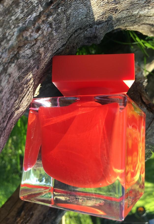 narciso-rouge-1.jpg
