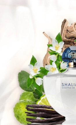 new-fragrance-guerlain-shalimar-souffle-de-lumic3a8re-perfume-2018-at-reastars-com_1.jpg
